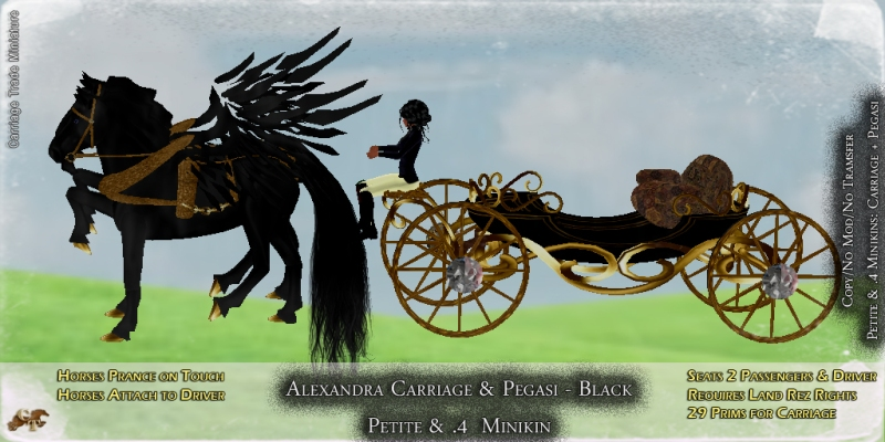 CT-Petite-Alexandra-Carriage-Pegasi-Black
