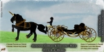 CT-Petite-Alexandra-Carriage-Unicorns-BLACK