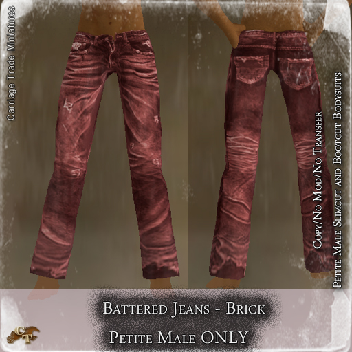 CT-Petite-Male-Battered-Jeans-Brick